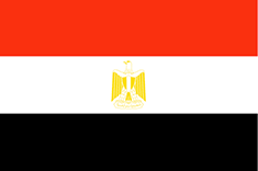 Flag of cuntry 41st International Congress of The Egyptian Society for Neonatal and Preterm Care ( ESNPC )